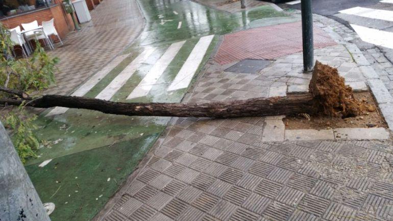60 incidencias en la provincia por lluvia y viento - Cadena Ser