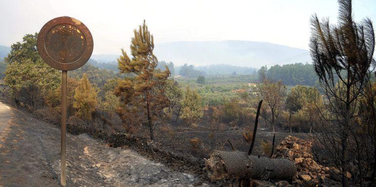 Paraje quemado el pasado agosto en el incendio