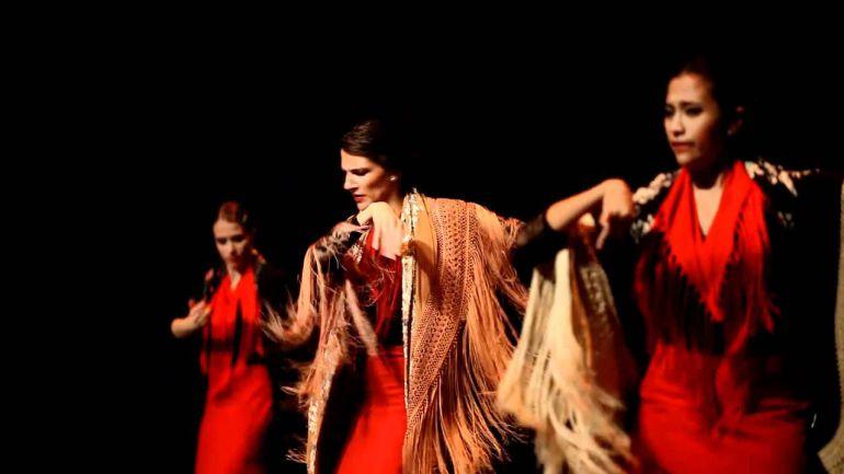 El flamenco a examen