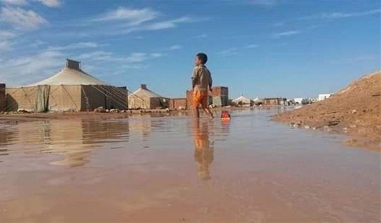 inmigracion: Inundaciones en el Sahara