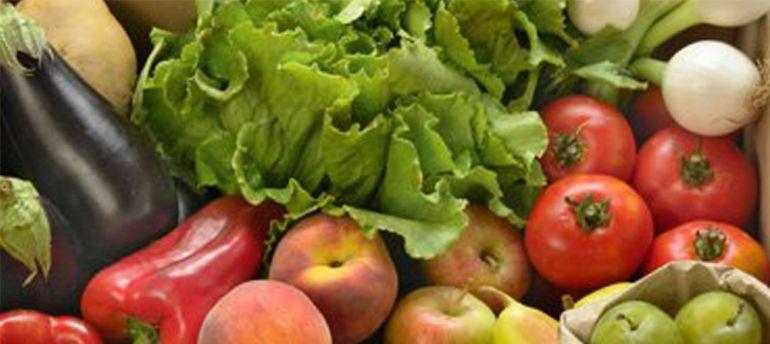 Productos Ecol Gicos Para Los Comedores Escolares Ser