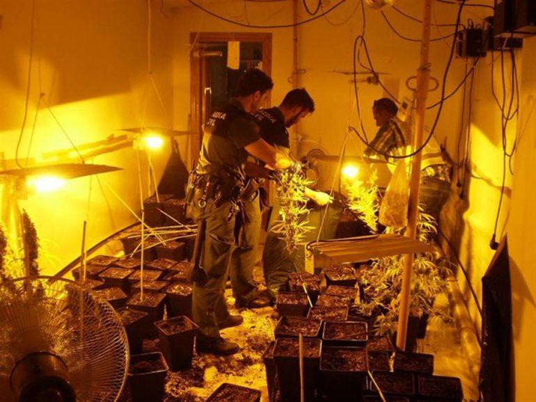 Imagen de Archivo de una operación de la Guardia Civil en un domicilio particular de la localidad de Loja(Granada) donde se cultivaba marihuana y se robaba fluido eléctrico