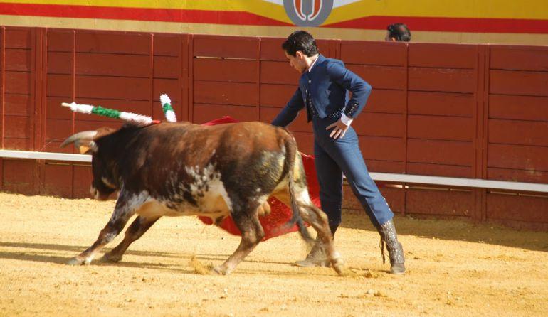 Corrida de toros en la plaza de Cenicientos