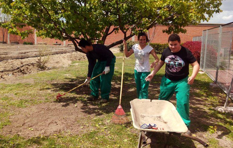 Los alumnos del programa profesional de jardinería ultiman los detalles del huerto ecológico del Centro Ponce de León.