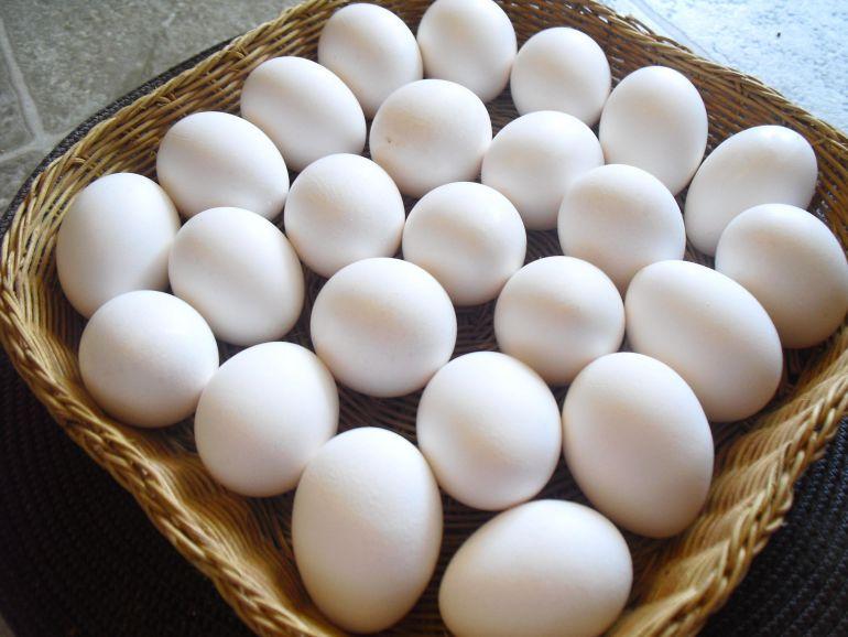 Intervenidos 80.000 huevos no aptos para el consumo en El Viso y Carmona