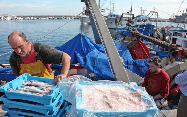 Formación contra pesca ilegal en el Puerto de Vigo: Vigo como referente contra la pesca ilegal