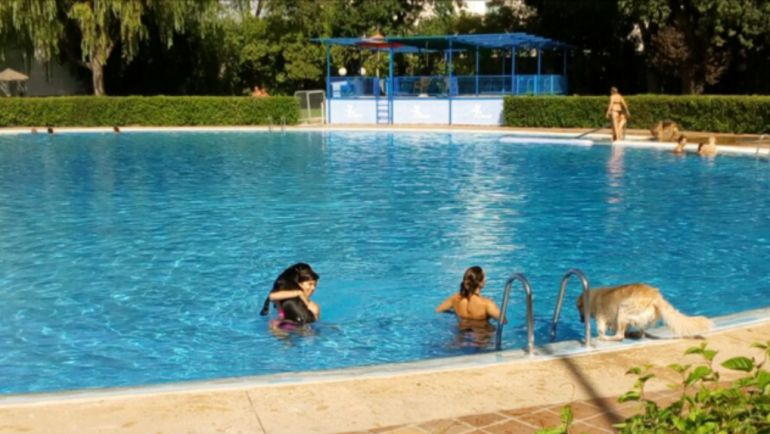 Comienza el 39 piscican 39 radio albacete cadena ser for Piscina municipal albacete