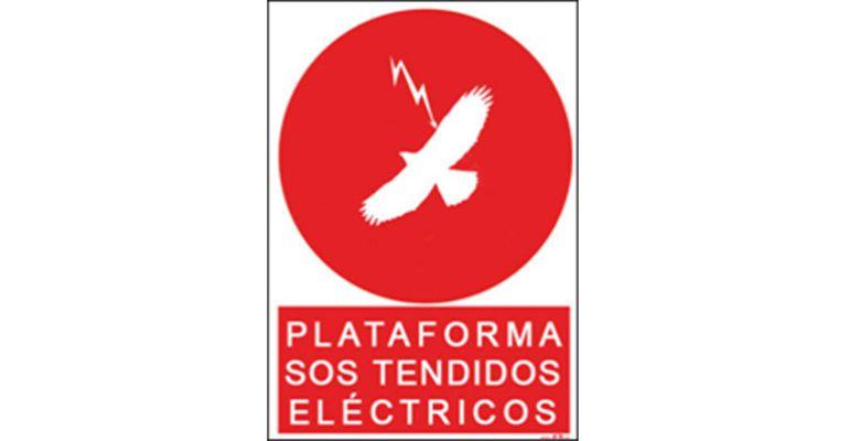 Cartel de presentación de la plataforma
