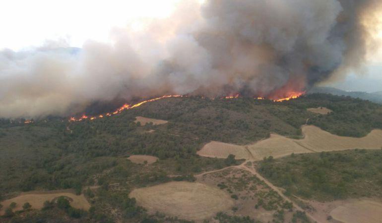 Controlado en menos de dos horas un incendio forestal en Elche de la Sierra