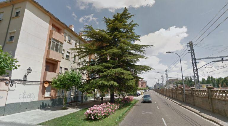 Paseo Victorio Macho en Palencia