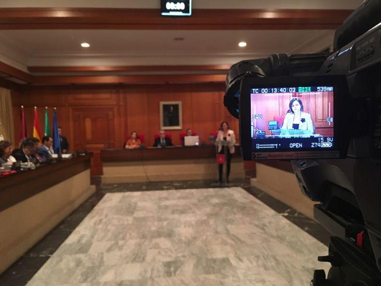 Isabel Ambrosio durante su intervención en el Pleno de hoy