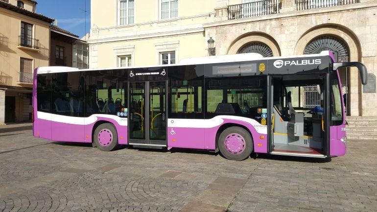 Autobuses urbanos de palencia los usuarios del transporte for Oficina de turismo de palencia