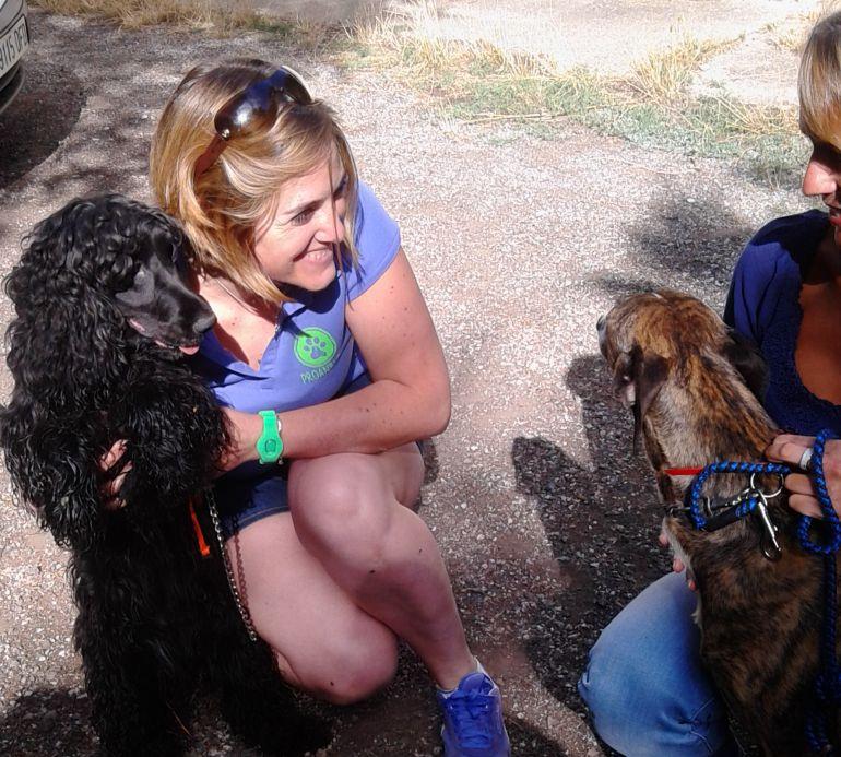 Bienestar animal: PROANBUR pide a la Diputación controlar irregularidades en su perrera