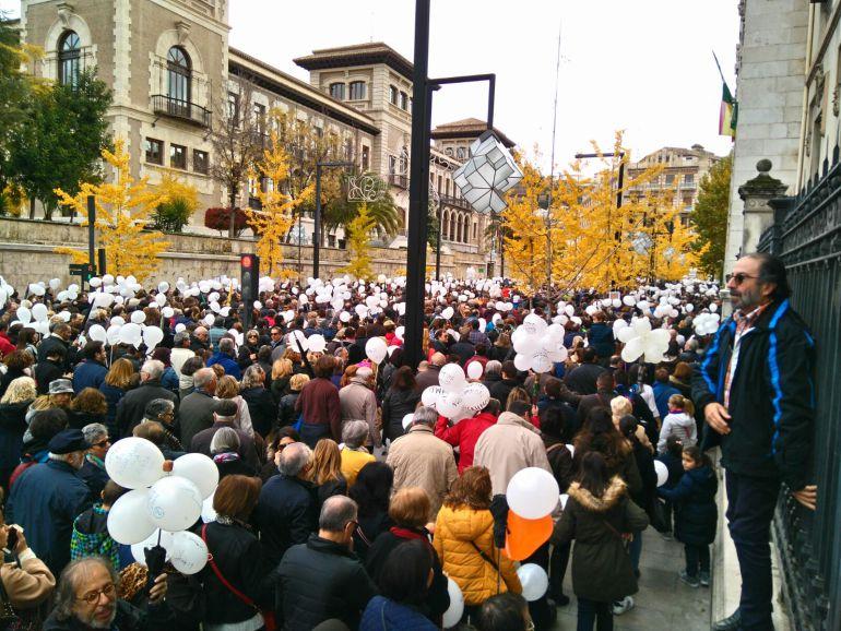 Manifestación por una sanidad digna del 27N.