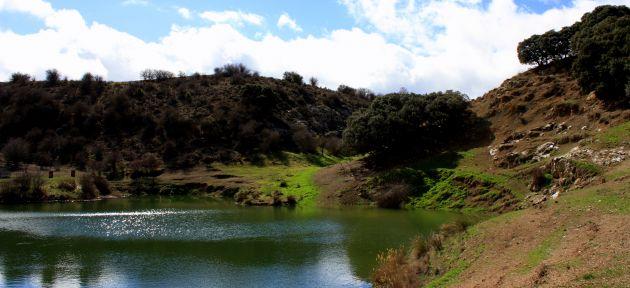 La superficie de la microrreserva es de 125 hectáreas.