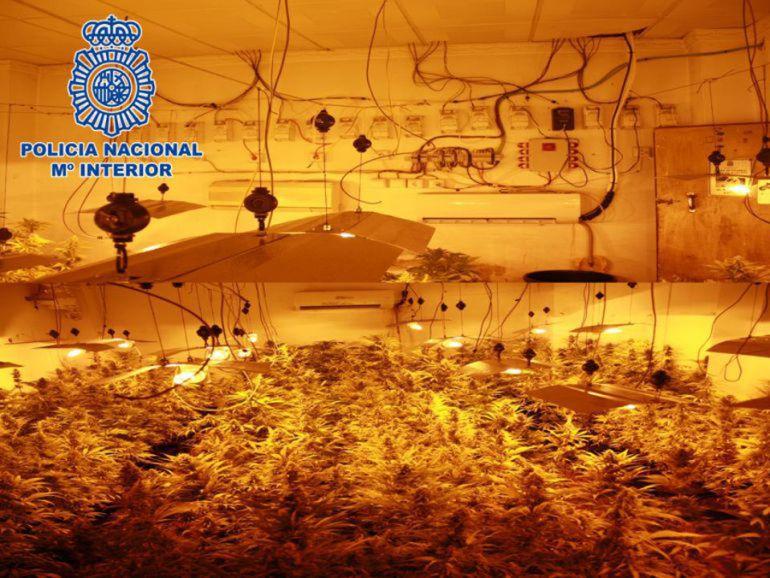 Foto de archivo de una plantación interior de marihuana en Granada con fraude en el suministro eléctrico