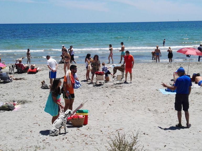 Playa para perros de Santa Pola