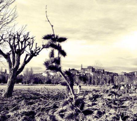 Algunas familias abandonan la ciudad para vivir en los pueblos.