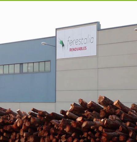 Forestalia investigará con Ciuden sinergias en gestión de biomasa