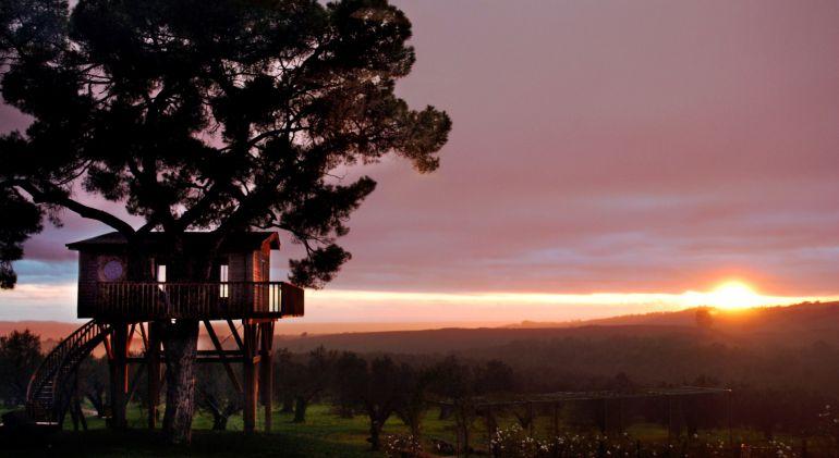 Noches con Encanto quiere crear en Cuenca cabañas en los árboles.