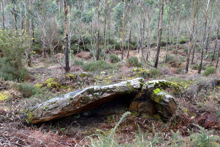 Mámoa con dolmen descubierta por la asociación Mariña Patrimonio en Xove