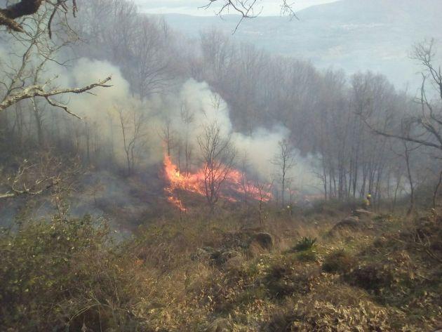 Imagen del incendio forestal en Rebollar, Valle del Jerte.