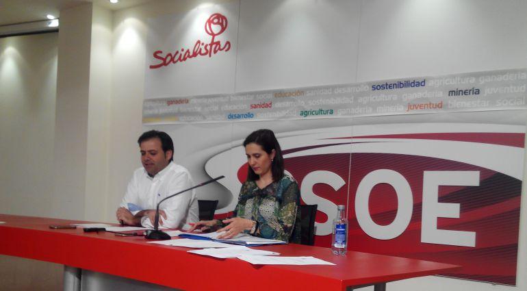 """El PSOE pide que el ministro De la Serna explique el """"desmantelamiento"""" de Feve"""