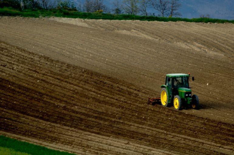 UAGA impulsa la innovación en nuevos cultivos para revitalizar el sector