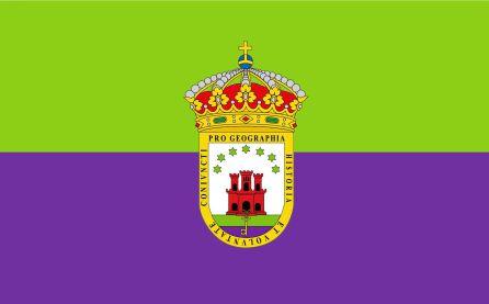 Bandera y Escudo del Campo de Gibraltar.