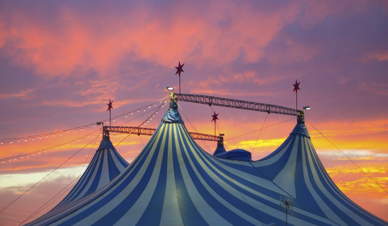 Los circos que llegan a Elda lo hacen sin animales