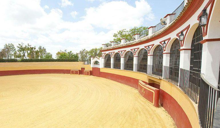Plaza de tientas de la Hacienda El Vizir en la localidad sevillana de Espartinas