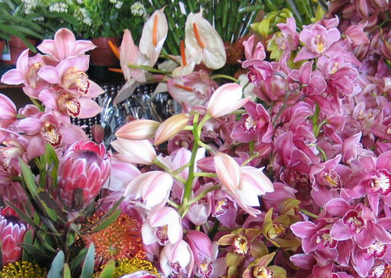El Día del Florista se conmemora el 9 de abril