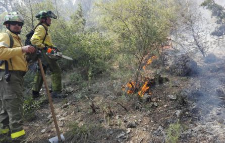 Dos operarios intentan apagar el incendio.