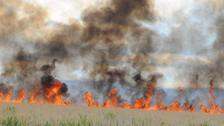De acordo coa situación actual e as previsións meteorolóxicas para os vindeiros días, as comunicacións e autorizacións de queima carecen de validez.
