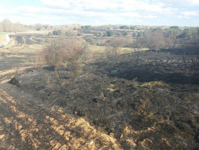 Zonas de cultivo de cereal y un área de rastrojo es la zona afecctada por el incendio