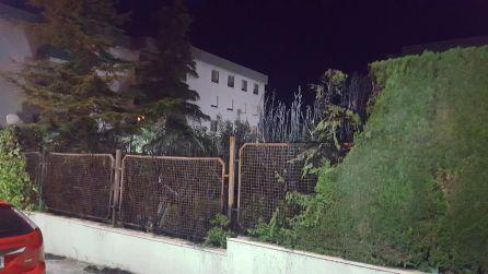 Estado en el que quedaron los setos incendiados en el residencial de la calle Alberca de Jaén.