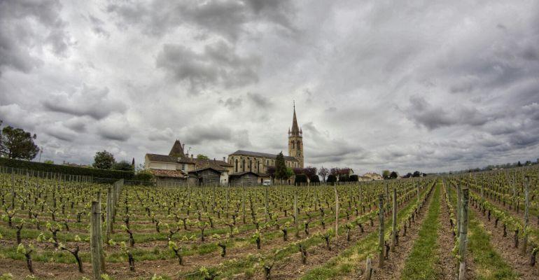 Viñedo de Chateau Le Fleur-Petrus