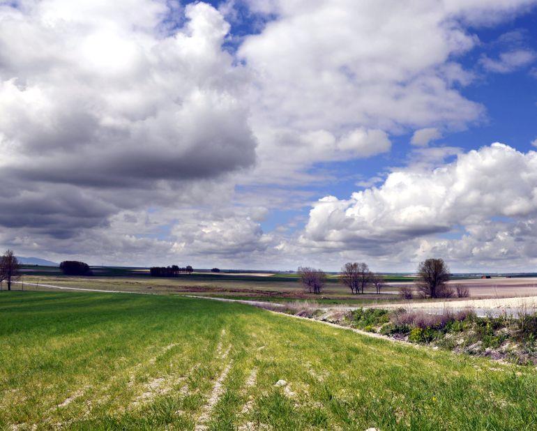 UCCL pide la creación de una mesa de seguimiento de la sequía en los cultivos de la región