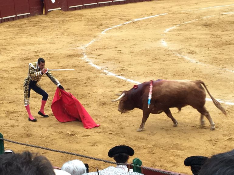 Imagen de la plaza de toros de Jerez