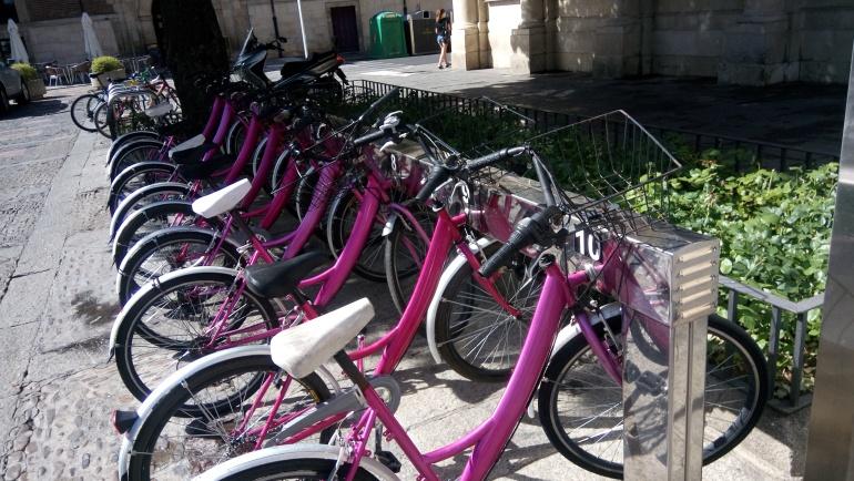 'León en bici' pide al Ayuntamiento que recapacite y peatonalice Ordoño II
