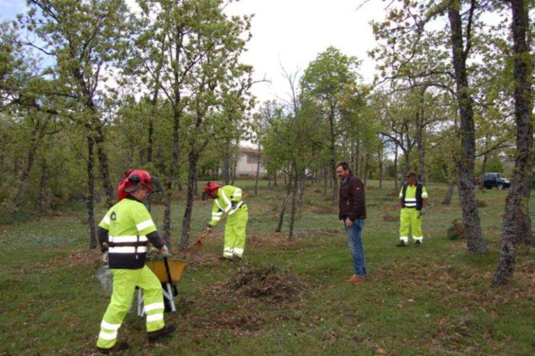 El Plan de Empleo Forestal de la Diputación dará trabajo a 50 parados