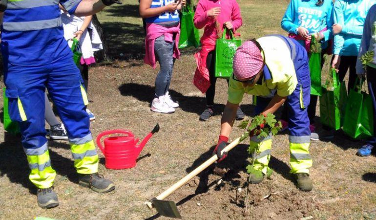 Los técnicos municipales de Pinto, ayudando a los niños a plantar los árboles