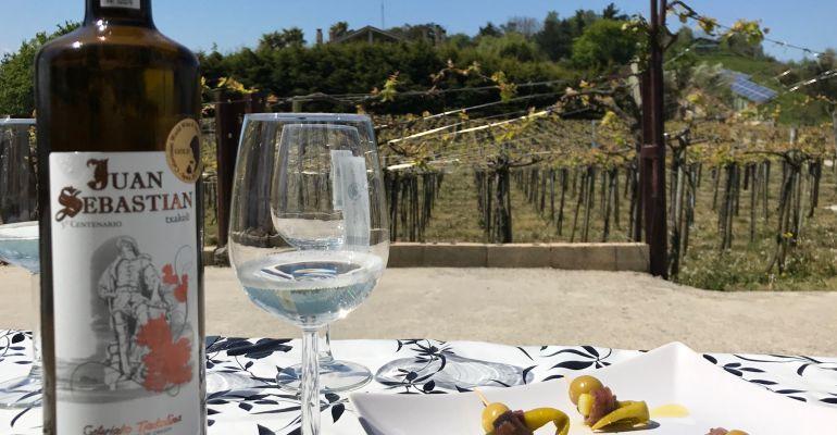 Un viaje bien planificado para disfrutar de un buen vino a pie de viña