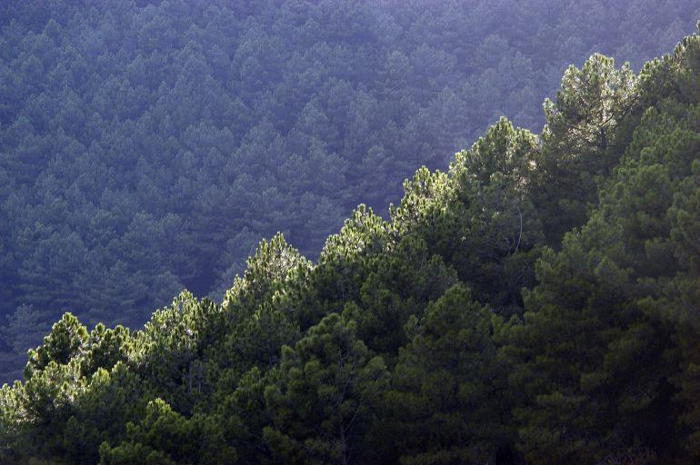 Barranco de las Cinco Villas, en la Sierra de Gredos