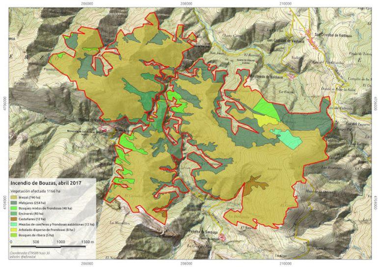 Zonas de arbolado afectadas por el incendio de Bouzas