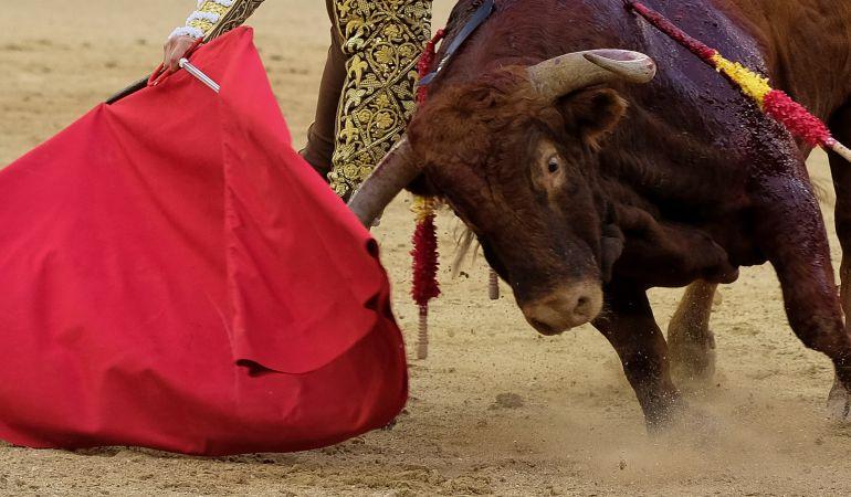 La organización Parla Antitaurina pide el fin de los festejos taurinos en la localidad
