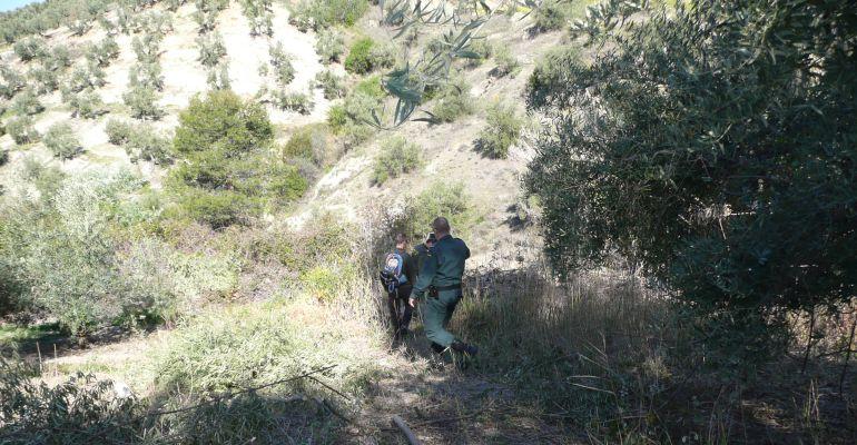 Agentes del Seprona rastreando cebos envenenados.