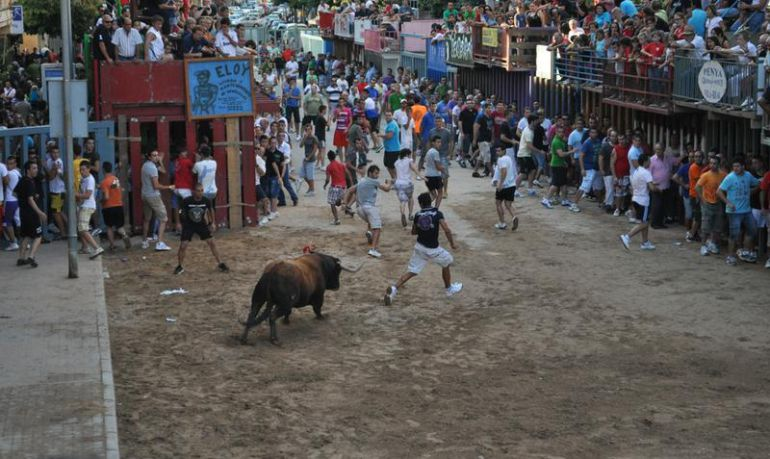 VILA-REAL: Un hombre de 76 años resulta herido en la exhibición de vacas