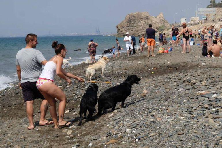 playas de espana que permitan perros