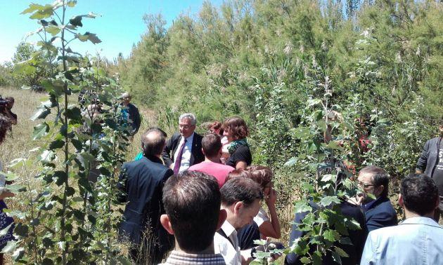 Las 13 hectáreas han sido cedidas por el Gobierno de Aragón al proyecto del Ayuntamiento de Zaragoza. Están en Movera y llevan 10 años sin actividad